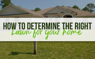 How-to-determine-the-right-lawn-for-your-home